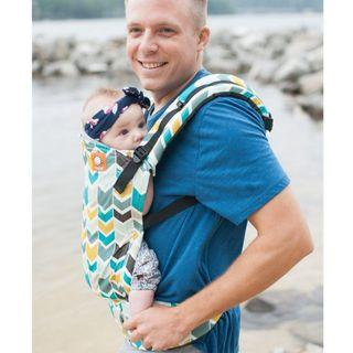 BN Standard Tula Agate brand new baby carrier canvas printed