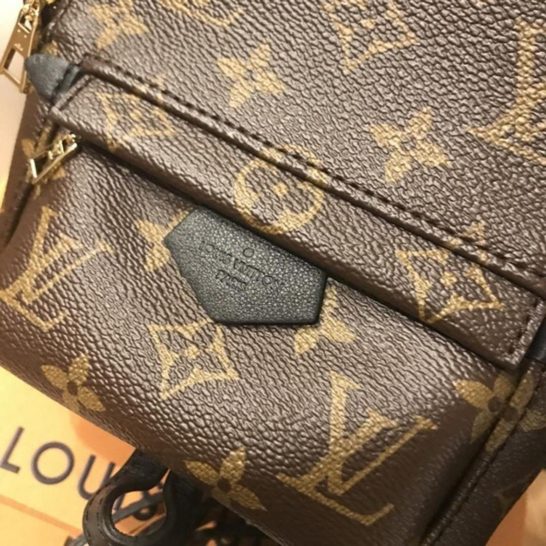 Louis Vuitton Palm Spring Mini backpack Brown Monogram