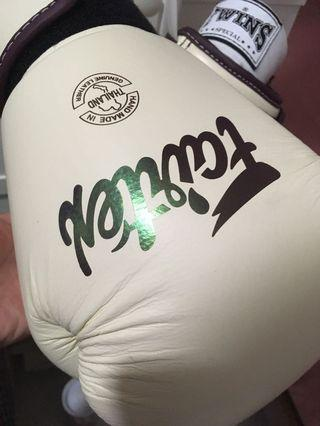 Limited Edition Fairtex MuayThai / Boxing 12oz Gloves #AnywhrCarousell