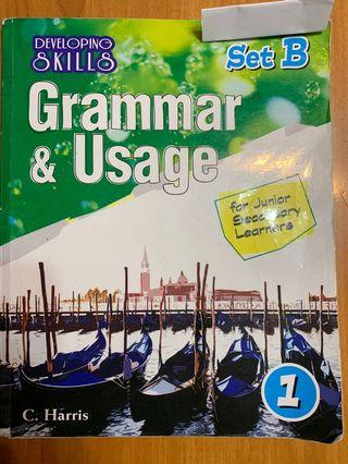 Developing Skills: Grammer & Usage for Junior Secondary Learners 1 (Set B)