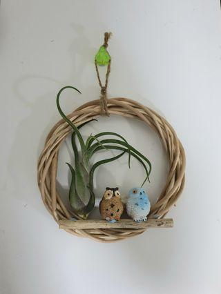 Hanging Airplant display