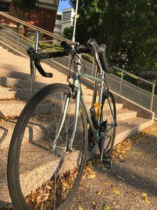 Priced reduced: Vintage Rossin Trilly Road bike