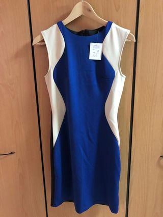 🚚 Cobalt Blue Work Dress (S) BNWT with back zip and inner lining