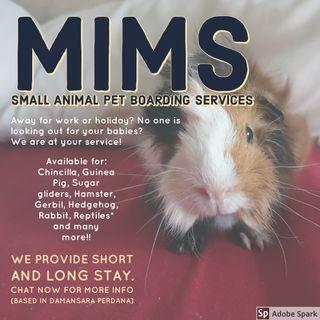 Small Animal Pet Boarding Services