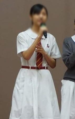 聖安多女書院  高中夏季校服裙