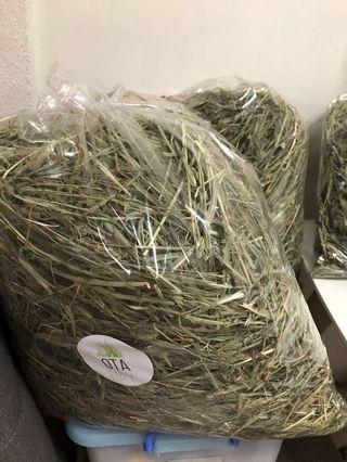 USA second cut Timothy hay