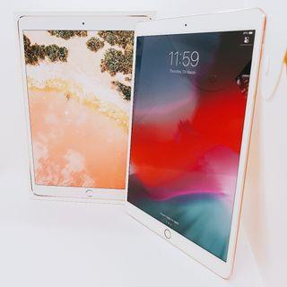 iPad Pro 10.5 512GB WiFi + Cellular (Pristine Condition)