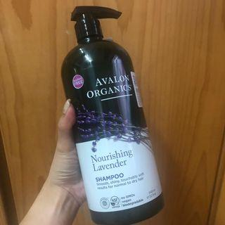 Avalon Organics有機薰衣草洗頭水