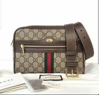 Gucci authentic ophidia 100%