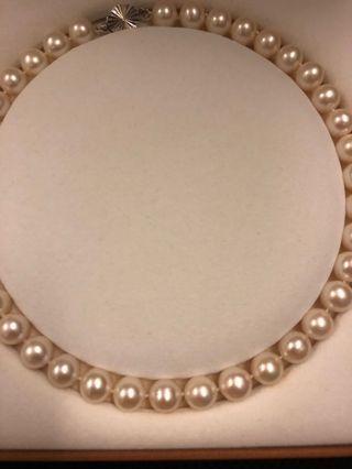 天然珍珠  天然貝珠 珠寶 珍珠項鍊