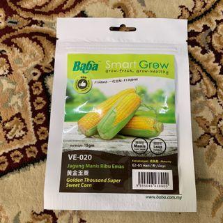 Baba Golden Thousand Super Sweet Corn Seeds