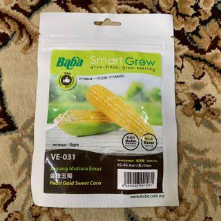 Baba Pearl Gold Sweet Corn Seeds