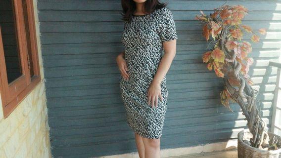 The Executive Leopard Dress