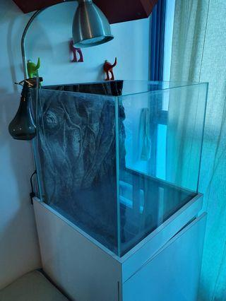 50cm x 50cm x 48cm cube fish tank with background. Cabinet not included.