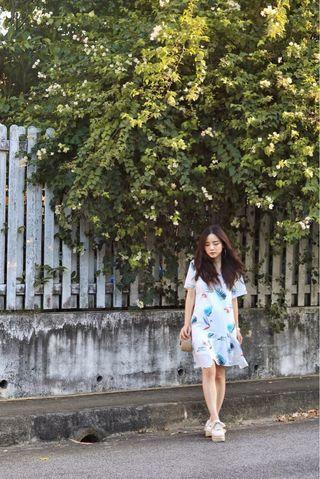 🚚 TheSundayAvenue Dress