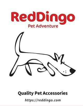 🚚 Red Dingo Collars