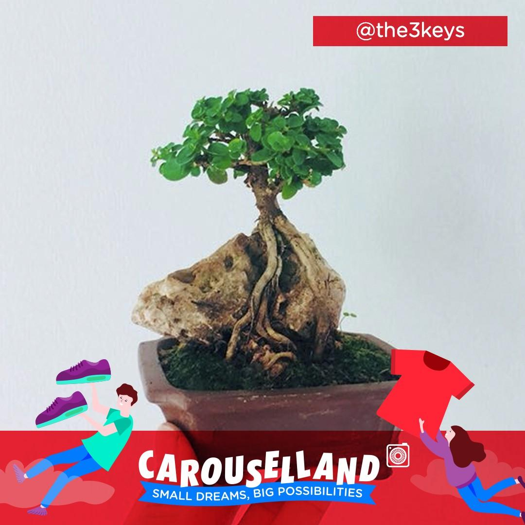 the3keys - Carouselland 2019 Featured Sellers