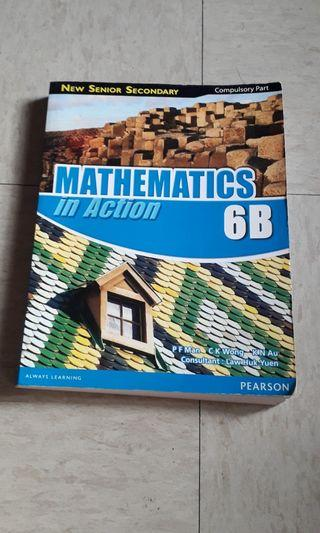 Mathematics In Action G B