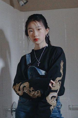 🚚 embroidered dragon long sleeved top