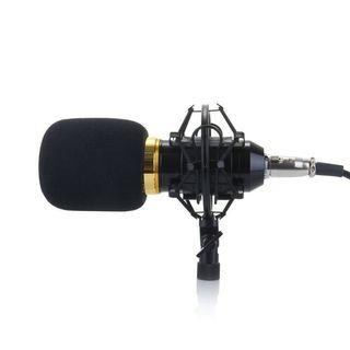 Microphone Condensor BM800 + stand