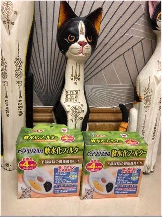 🐱GEX 貓用活性碳水機濾芯🐈