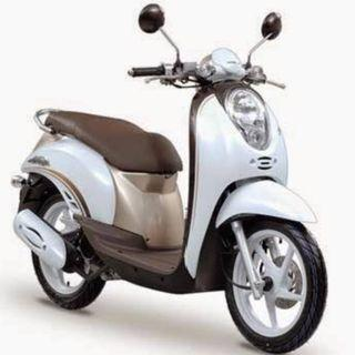 honda SCOOPY - View all honda SCOOPY ads in Carousell