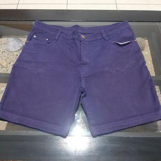 Zara Purple Hot Pants
