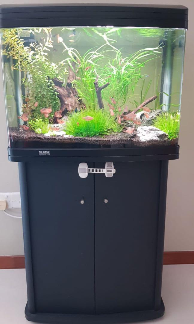 Atman 2 feet fish tank aquarium  and cabinet. Everything included