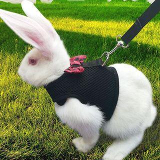 Pet Harness Cat Dog Rabbit Bow-tie Jacket PC078 ta