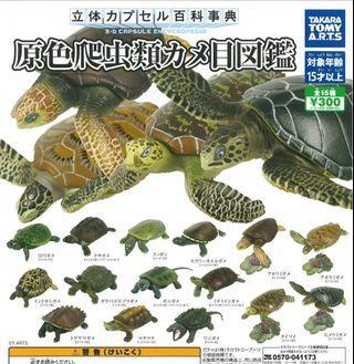 百科事典 原色 海龜 扭蛋