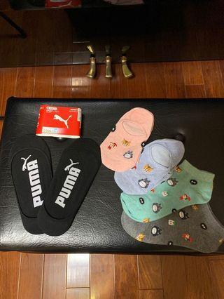 🚚 豆豆龍 龍貓 襪子4雙 送 2雙Puma 襪子