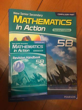 Mathematics in action 5B