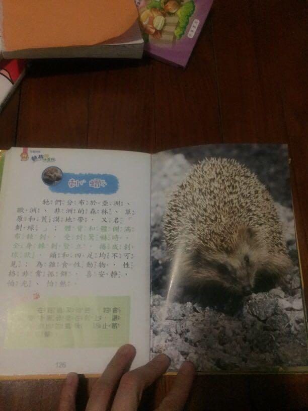 圖解 動物 小百科