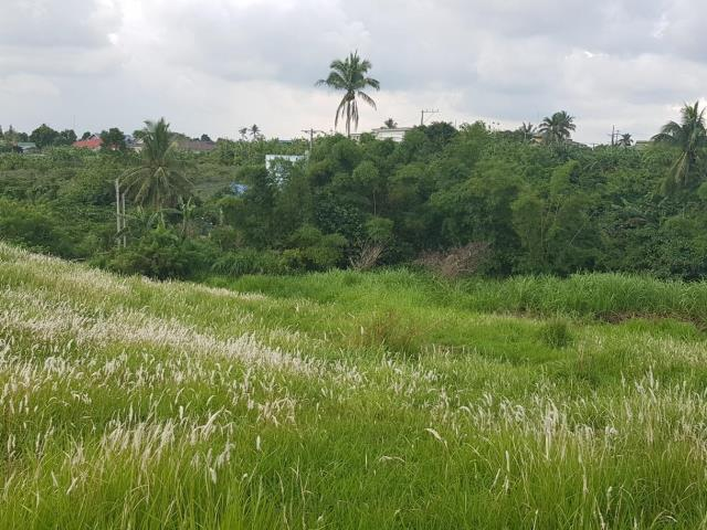 For Business Investors! Tolentino West Raw Land for sale in