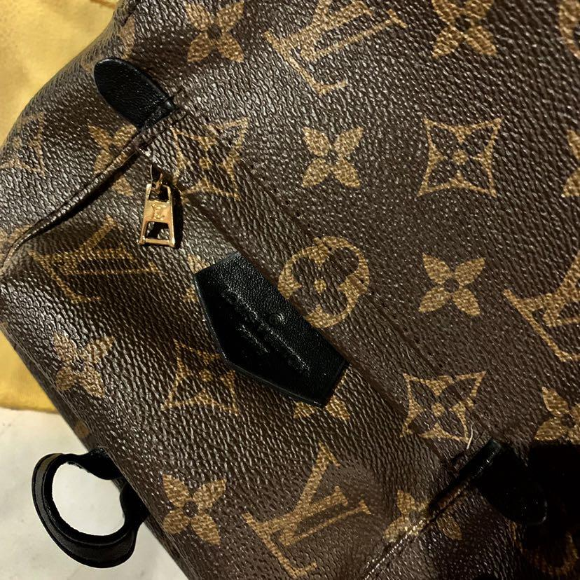 LV Louis Vuitton Palm Springs Monogram Mini Backpack