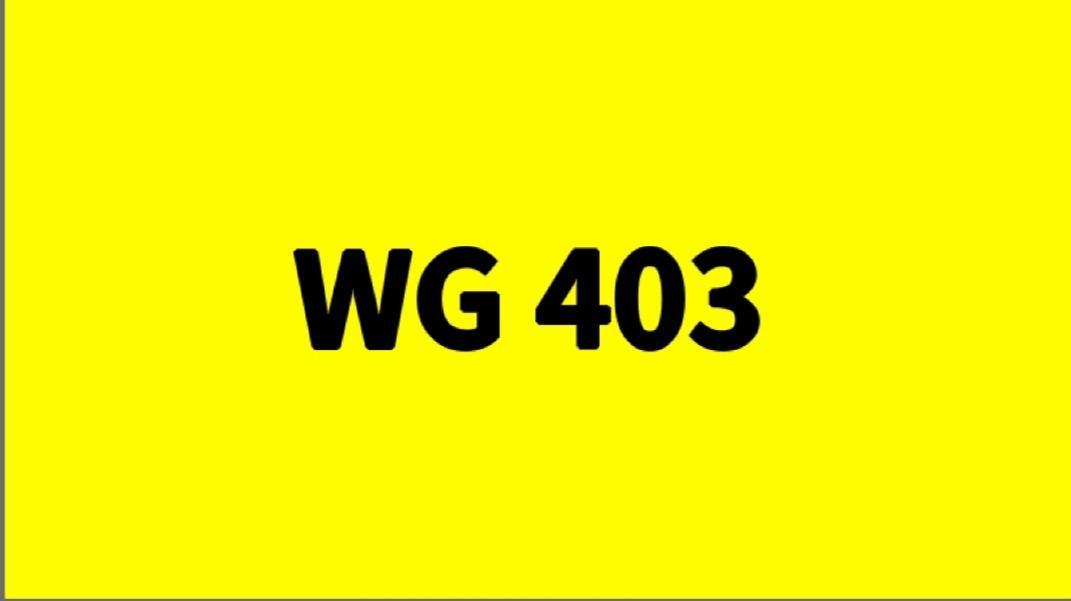 WG 403