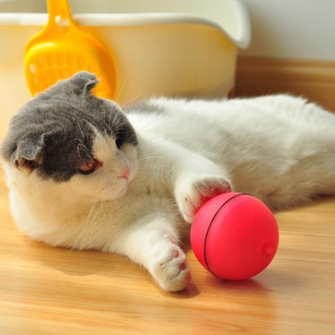 TPE079 LED Light Laser Ball Magic Ball Teaser Exercise Interactive Cat (Toys Fun Kitten)