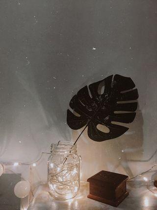 Tumblr room (Artificial palm leaf, tumblr lamp)