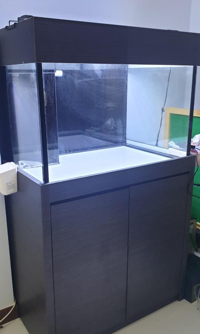 322 fish tank with sump tank