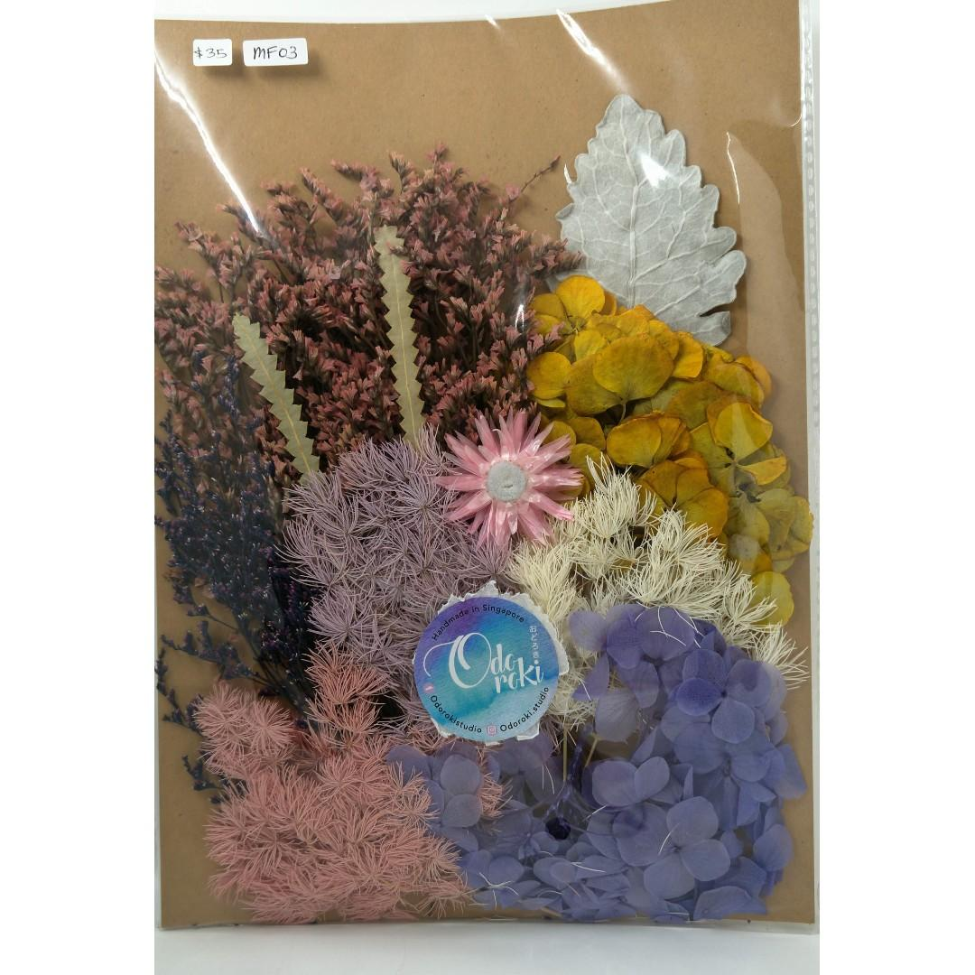 Preserved/Dried Flowers / Pressed Flowers (large)