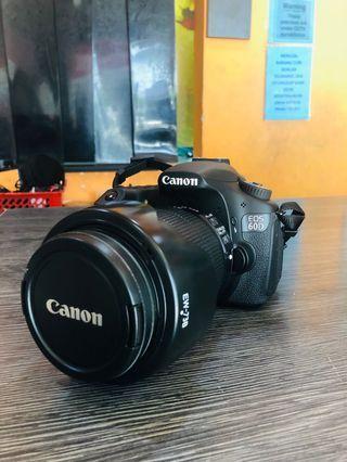 Canon EOS 60D / 18-135mm