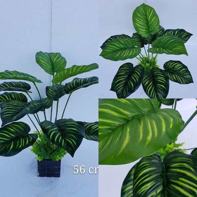 Artificial Plant ( Instock , buy 2 free 1 ) 😱