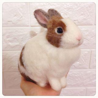 客製羊毛氈兔寶
