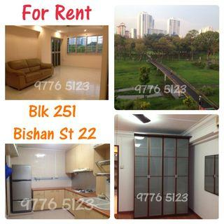 5A Corner Apartment For Rent *Very Privacy* - 251 Bishan Street 22