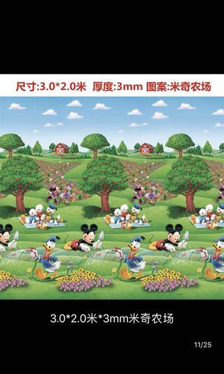 Disney Picnic Mat
