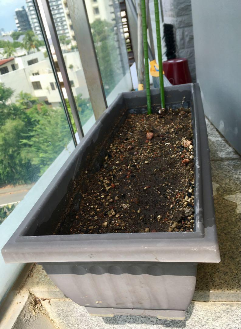 Planter box with soil