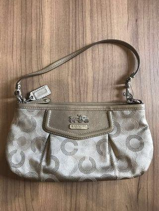 Preloved Coach Small Bag