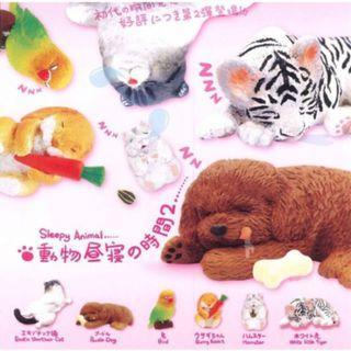 動物就寢時間扭蛋2