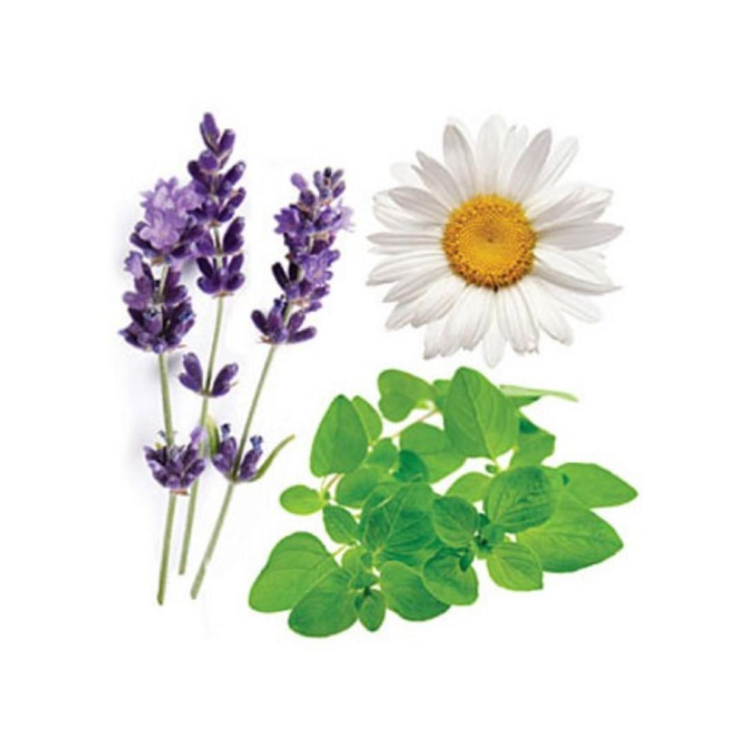 doTERRA, Essential Oil Blends - Lavender Peace (15ml)