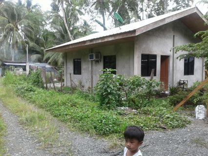 House Lot For Sale Tagum City View All House Lot For Sale